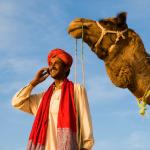 Digital Bedouine square